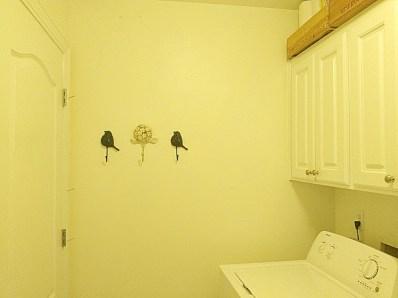 Laundry walls 2