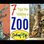 7 Tips For Visiting a Zoo