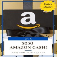 $250 Amazon Cash Giveaway (Ends 12/1)