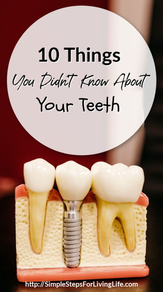 10 things you didnt know about your teeth