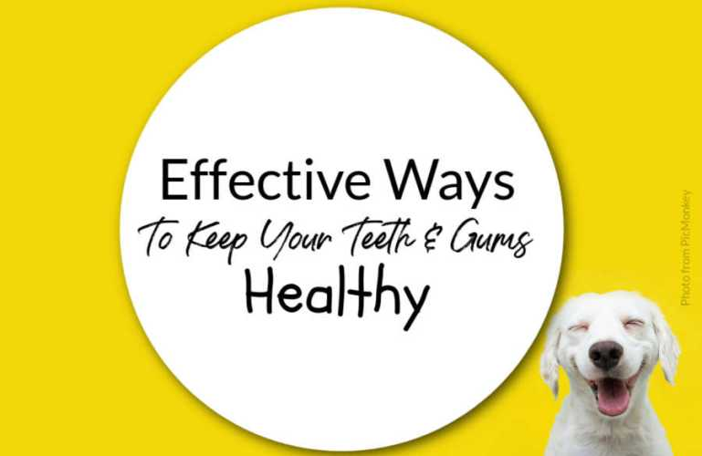 Effective Ways To Keep Your Teeth And Gums Healthy