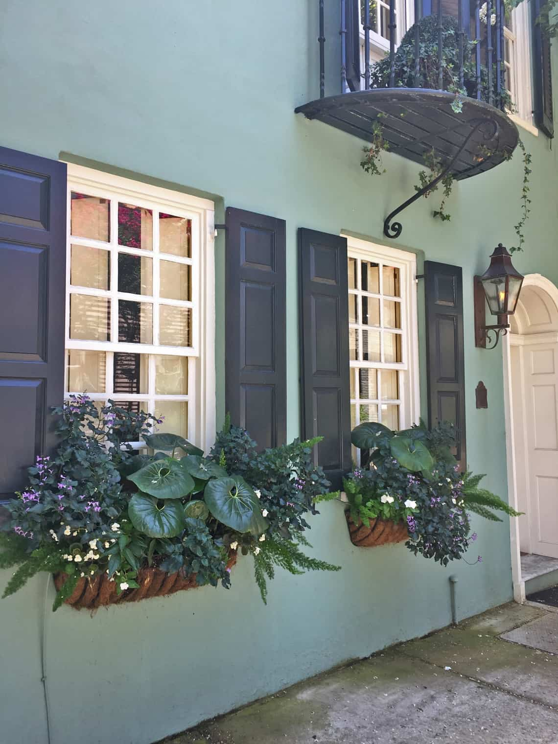 Roadtrip Reality: Charleston Window Boxes Green