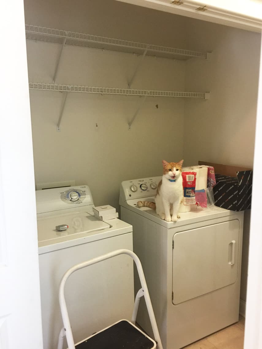 One-Room-Challenge-Laundry-Room-Decisions-Progress-before
