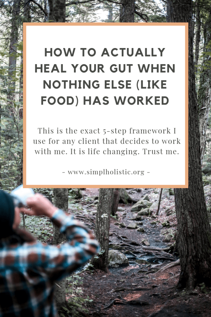 "Cover photo with a wooded background and guy in a flannel drinking organic tea with text overlay saying "" How to actually heal your gut when nothing else (like food) has worked""."