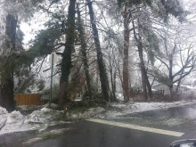 This is by my daughters college. The entire are was covered in fallen tree limbs