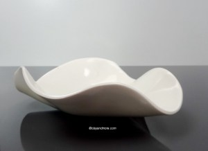 white porcelain bowl / dish
