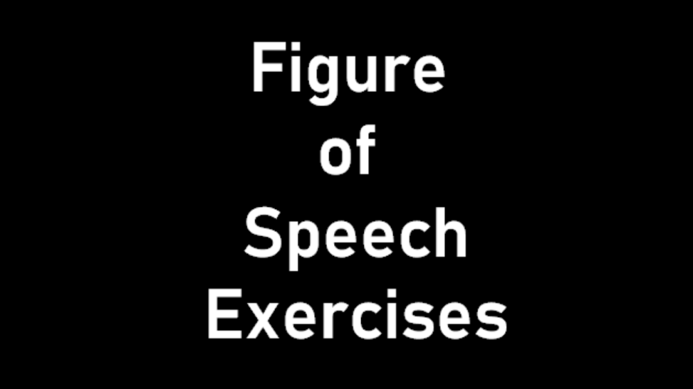 medium resolution of Figure of Speech Exercise with Answers for Grade 11/12