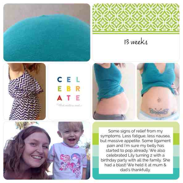 pregnancy project life