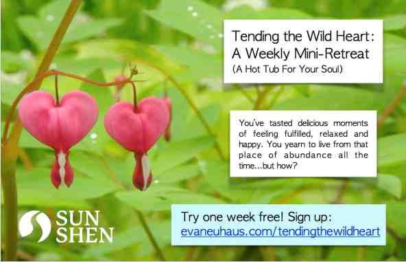Guest Post | Tending the Wild Heart 1