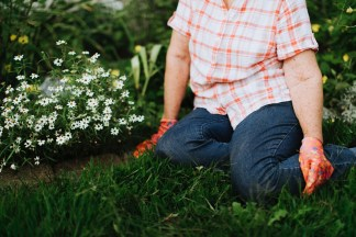 A person sitting on the lawn beside white flowers