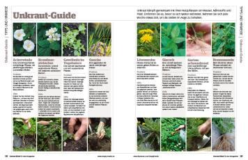 Gartentipp: Unkraut-Guide