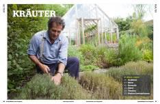 Gartentipp: Kräuter anpflanzen