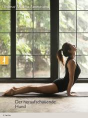 Yoga-Anleitung - Der heraufschauende Hund - Yoga - der große Guide - 01/2018