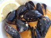 Mussels in a delicious sauce