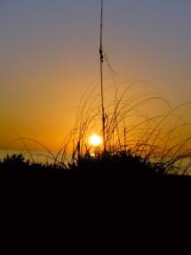 Sunset at Captiva
