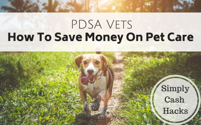 PDSA Vets: How To Save Money On Pet Care