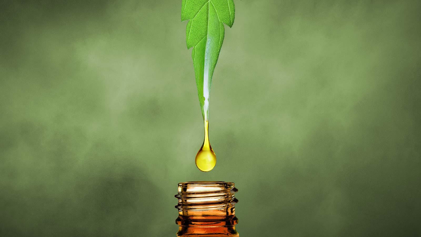 CBD Oil tincture for pain