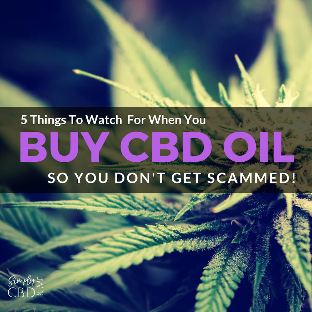 5 Things To Watch For When You Buy CBD Oil So you Don't Get Scammed!