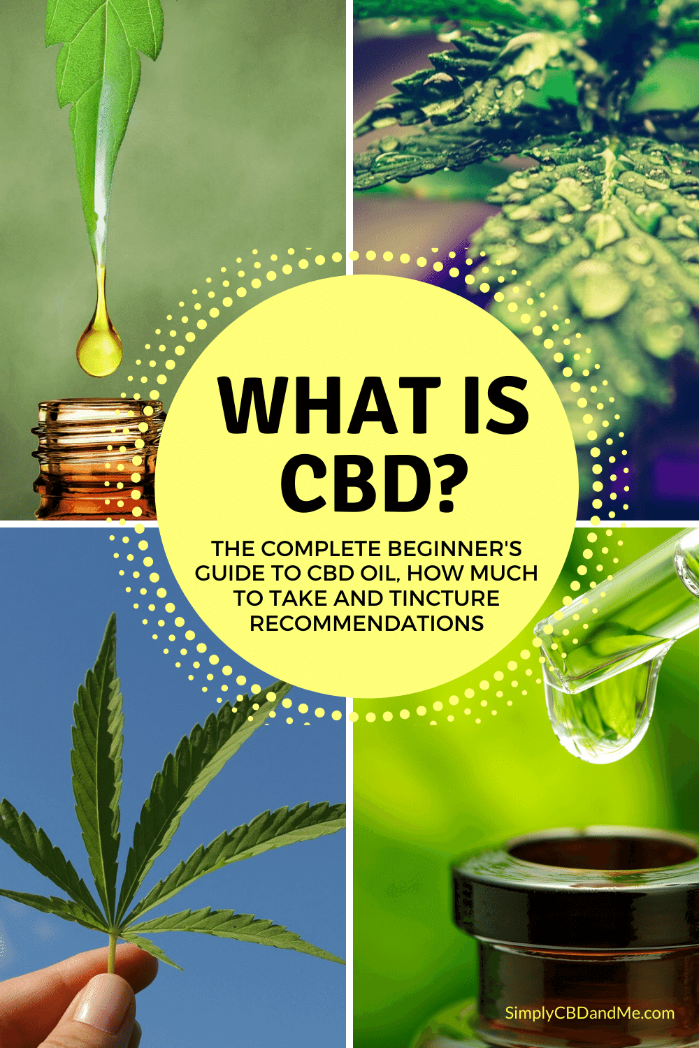 What is CBD? A complete beginner's guide to CBD oil, how much to take and tincture recommendations!
