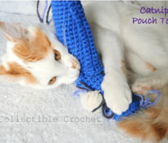 Catnip Pouch Cat Toy Crochet Pattern