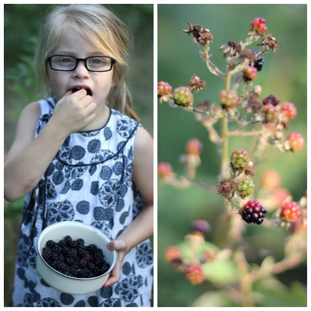 SimplyDanishLiving_Blackberrypicking2