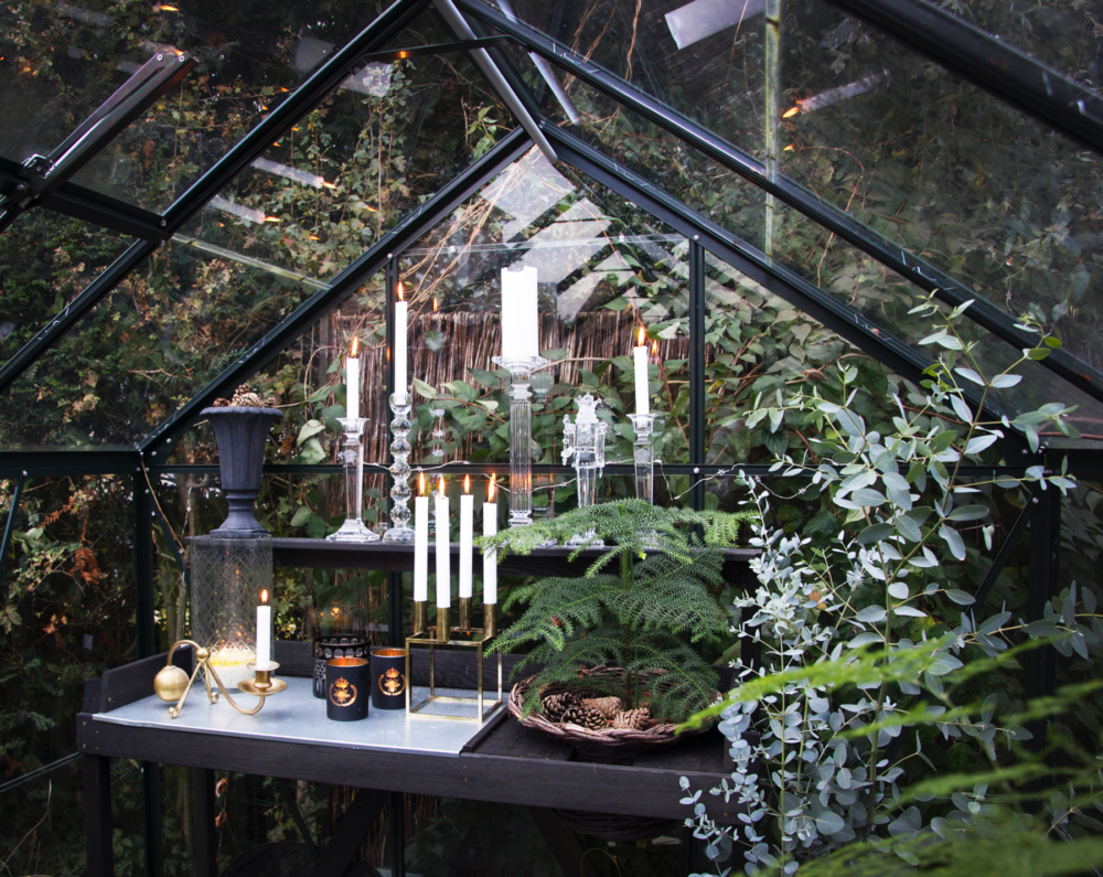 hygge-in-the-greenhouse