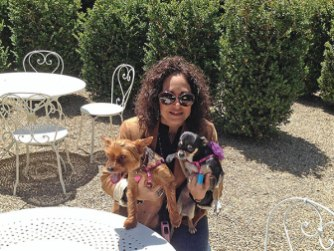 Dog friendly wineries Sonoma Valley Buena Vista Simply Driven