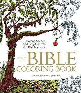 bible coloring book cover