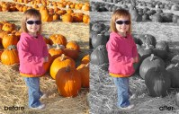 Photoshop Elements Video Tutorial: Pop Subject Using Selective Coloring
