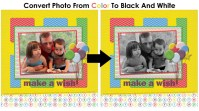 2 Ways To Convert A Color Photo to Black And White In Photoshop Elements