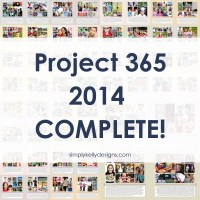 Project 365: It's A Wrap on 2014