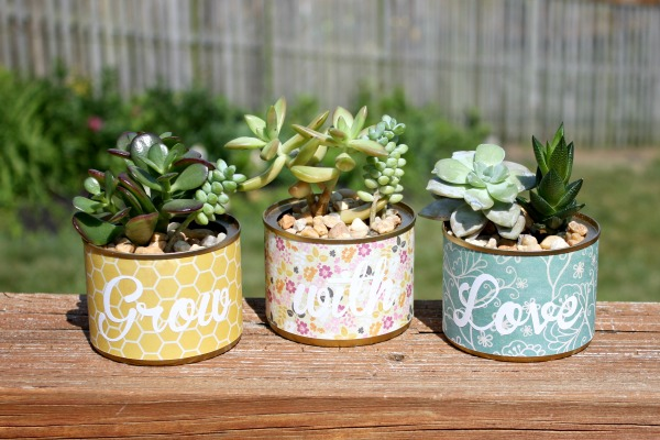 Upcycle Cans Into Planters | Homemade Interest