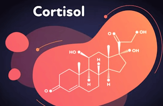 Cortisol Post covid-19 recovery