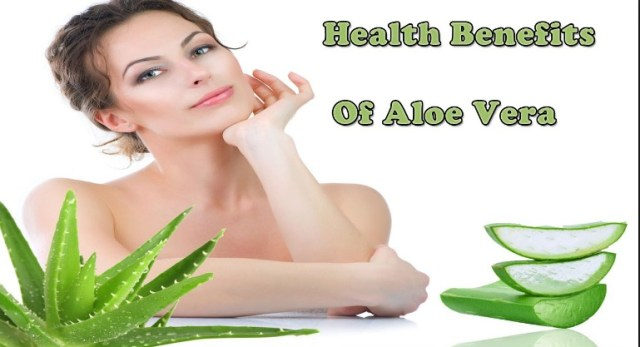 Aloe Vera Benefits on Cholesterol and Overall Health