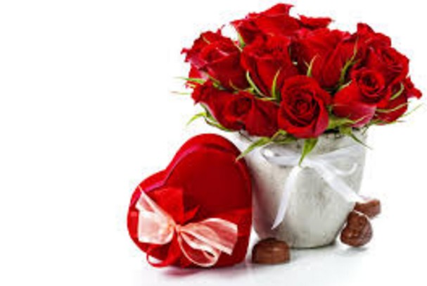 couple rose day images HD wall paper