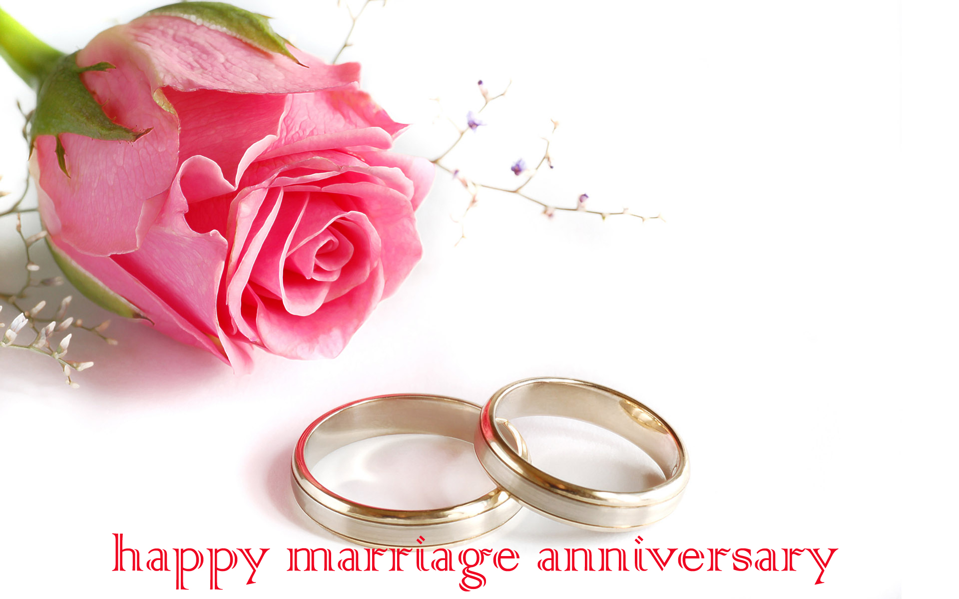 51+ Happy Marriage Anniversary Whatsapp Images Wishes