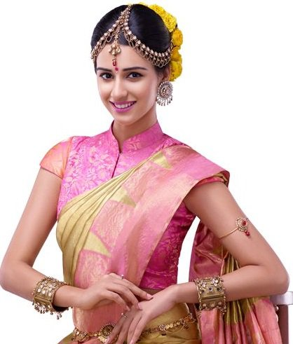 high neck design blouse for indian wedding