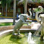 Hope Zoo Kingston Jamaica