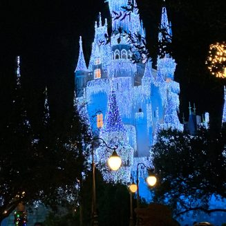 disney_at_night_2