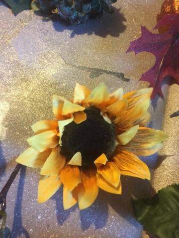 Sunflowers Before