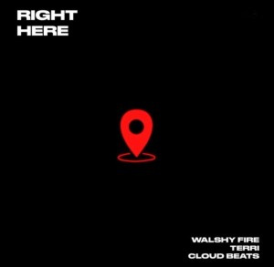Terri Ft Walshy Fire - Right Here