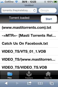 Screenshot of torrent loaded