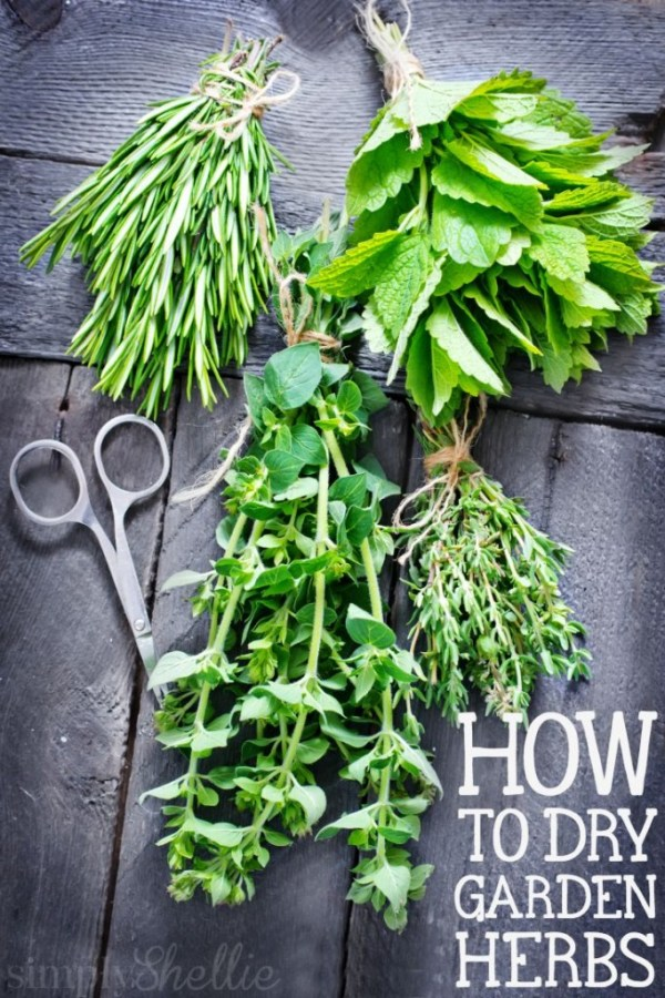 How to Dry Garden Herbs