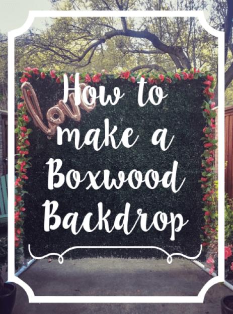 Boxwood backdrop