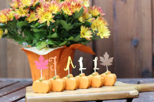 Fall decorations, Silhouette cameo