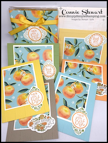 FACEBOOK Live Rewind – ONE SHEET WONDER – 6 Cards & Gift Box
