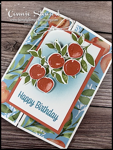 die-cut-peaches-on-front-of-birthday-fun-fold-card