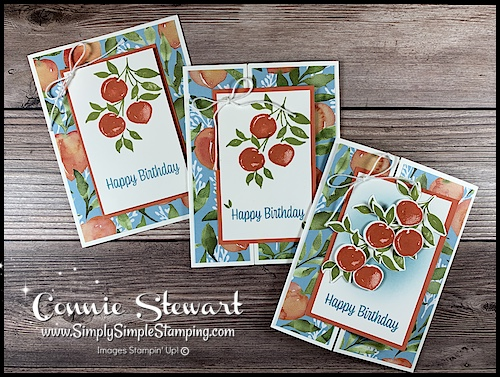 birthday-fun-fold-card-made-with-sweet-as-a-peach-by-stampin-up