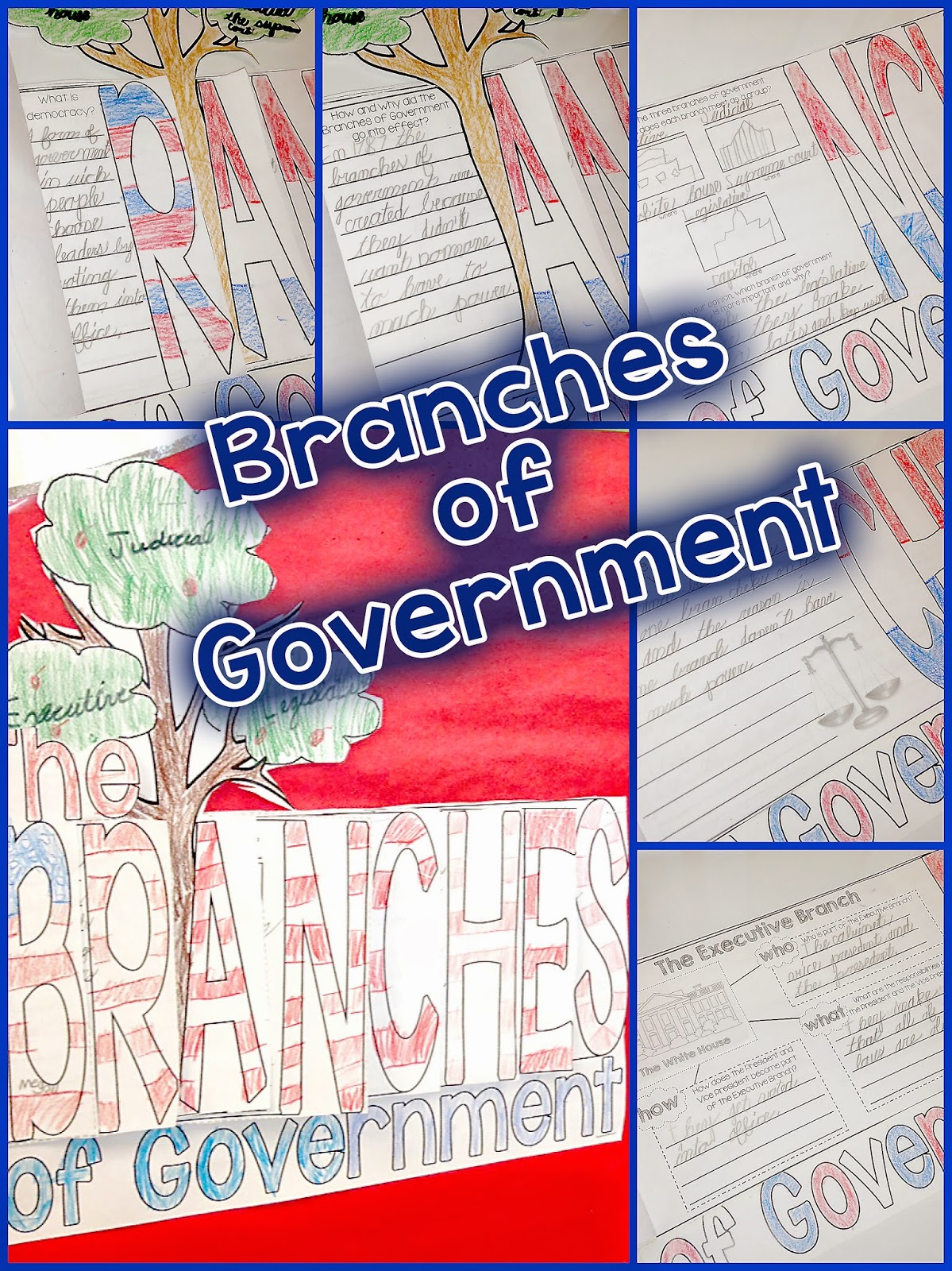 Branches Of Government Amp A Freebie