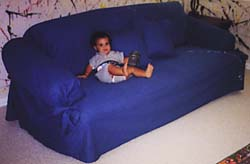 sofas with loose cushions or pillows